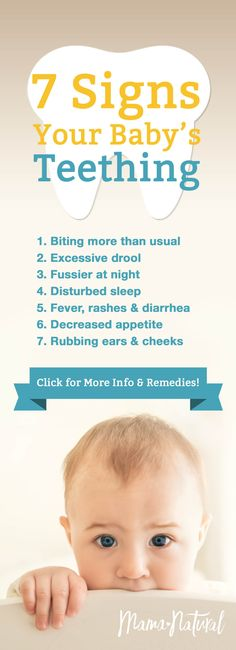 Is your baby showing teething symptoms, or are they fussy for some other reason? Well, if you see these 7 signs, they almost certainly are teething. Baby Teething Chart, Baby Teething Symptoms, Teething Signs, Baby Teething Remedies, Baby Life Hacks, Baby Development, Trendy Baby, Necklaces