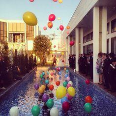 ドロップ&フライ⋆。˚✩ ⋆ ⋆ 結婚式でやりたかった事の一つ⋆′◡ु͐‵⋆100個以上のバルーンが浮き上がっていくのはすごく綺麗で風もなく晴天でほんとに良かった⑅◡̈*. #結婚式 #バルーンリリース #ドロップアンドフライ #晴れ #バルーン #披露宴 #ゲスト参加型 #プール #挙式 #花嫁 #happy #wedding #weddingparty #instagood #空