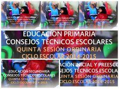 aLeXduv3: Quita sesión de Consejo Técnico Escolar (preescolar, primaria y secundaria)