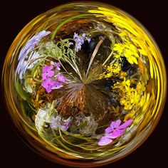 This polar abstraction reminds me of a beautiful Italian blown glass paperweight. Not quite a millefiori. Mine was quite a bit less work to create, from a photo of a collection of Texas hill country spring wildflowers by a creek.
