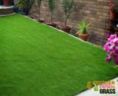 Buy Quality Synthetic Grass Lead Free Pet Friendly Kids Safe click the image to visit our official website Synthetic Lawn, Lead Free, Beautiful Homes, Grass, Golf Courses, Sidewalk, Garden, Ebay, Image