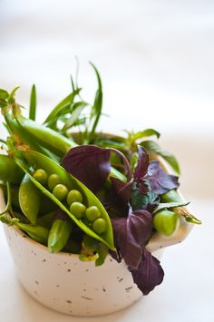 Food art for the eyes - Fresh Peas and Salad Greens - photographer Christopher Cina Fruit And Veg, Fruits And Veggies, Fresh Fruit, Mixed Vegetables, Fresh Green, Food Photography Styling, Food Styling, Spring Green, Kraut