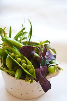 Fresh Peas and Salad Greens - photographer Christopher Cina