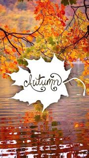 Autumnal wallpapers for your phone