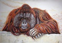 #orangutan #animal #art in gouache