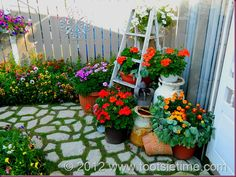 Cute little Courtyard Garden... this would be so cute in my little yard!