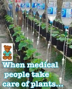 When medical people take care of plants. #gardener #medicalPlanting