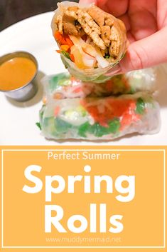 Perfect summer spring rolls filled with veggies, noodle, and tofu.  vegan, vegetarian, vietnamese peanut sauce, healthy, quick lunch Vegetarian Vietnamese, Vegan Vegetarian, Spring Roll Filling, Rice Paper Wrappers, Peanut Dipping Sauces, Glass Dishes, Spring Rolls, Meatless Monday