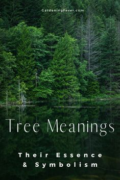 Have you ever wonder what meaning trees have? I bet you didn't know the essence and symbolism of trees. Head over to my blog #gardeningfever to learn Tree Meanings - Their Essence And Symbolism #tree #trees #symbolism tree tattoo | tree of life tattoo | tree house | tree stump ideas | tree house kids | Trendy Tree | Dollar Tree | Lemon Tree Dwelling |