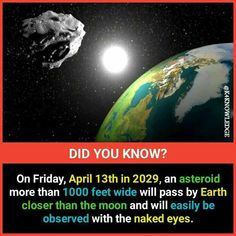 Amazing Science Facts, Some Amazing Facts, True Interesting Facts, Interesting Facts About World, Intresting Facts, Unbelievable Facts, Amazing Facts For Students, Physiological Facts, General Knowledge Facts
