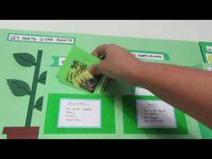 Lap Book de Plantas de quinto de primaria. Plant Science, Science And Nature, Material Didático, Third Grade, Activities, Books, Youtube, Laptop, School