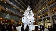 クリスマスツリー雪化粧 KITTE