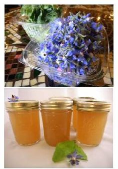 Borage Herb Jelly Canning Recipe – Tastes Like A Light Cucumber