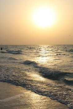 Abu Dhabi Stopover Attractions: Saadiyat Island. Check out my #AbuDhabi #UAE #Couchsurfing guide here: http://www.latinabroad.com/2016/10/12/couchsurfing-abu-dhabi-stopover/