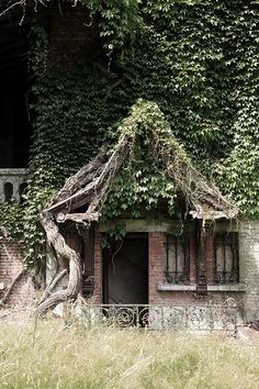 Wouldn't this be a cool, creepy house for one of the characters in Forbidden Doors? #hauntedhouse, #scarymovie #forbiddendoorsmovie