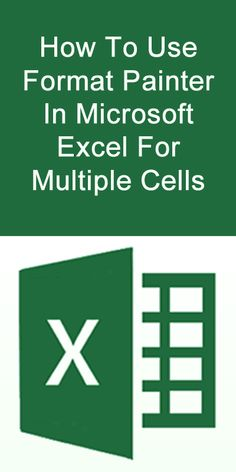 How To Use Format Painter In Microsoft Excel For Multiple Cells. #HowTo #Microsoft #Excel #FormatPainter