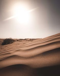 Download this free HD photo of sand, sun, sky and desert in Dubai, United Arab Emirates by Connor Jalbert (@connor_jalbert) #deserts #sandy #brown #travel #dubai
