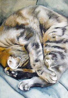 Bliss  By Jackie Coote.  Although Jackie's work as an artist varies in style and subject matter, she is frequently inspired by her own five cats (Frank, Dennis, Eddie, Lily and Donald), as well as those of friends and family.  She works mainly in watercolour, but has lately begun to get back into acrylics and oils.