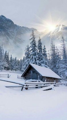 Already looking forward to winter and spring just started. Cabin life. Yes please.