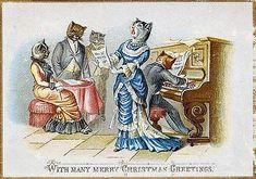 Christmas CATerwalling