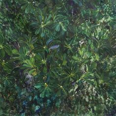 ANNA MARIA TSAKALI Art En Ligne, Anna, Oeuvre D'art, Spring Time, Les Oeuvres, Plants, Spring, Artist, Paintings
