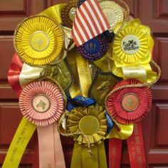 Vintage horse ribbons for front-door wreath for derby party.