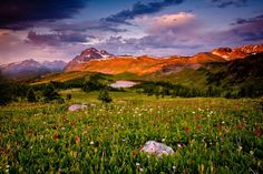 """Banff ... I have an urge to dance through this field singing """"The hills are aliiiiive... with the sounds of music...."""" #GILOVEALBERTA"""