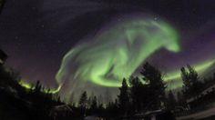 Fotografka vyfotila obrovského vlka, který se zjevil na noční obloze ve Švédsku