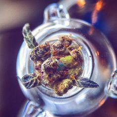Locked and loaded. #WoahStork provides the #cannabis you need. woahstork.com