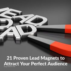 21 Proven Lead Magnet Ideas that Work - What is a Lead Magnet? A lead magnet isa n offer so AWESOME people are literally compelled to want it... https://blog.myleadsystempro.com/21-proven-lead-magnet-ideas-to-add-to-your-blog?id=robfore