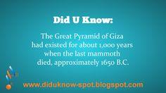 Pyramids and Mammoths