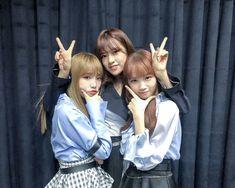 iz*one members Yena, Yujin, and Chaewon Kpop Girl Groups, Korean Girl Groups, Kpop Girls, Yuri, Honda, Sakura Miyawaki, E Dawn, Japanese Girl Group, Nanami