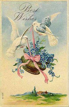 330 best vintage greeting cards images on pinterest in 2018 free vintage cards vintage ephemera vintage greeting cards vintage wedding cards vintage birds m4hsunfo