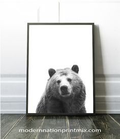 Bear Wall Art, Bear Print, Bear White Background, Bear Poster, Bear Printable Download, Wilderness Wall Art, Wild Animal Wall Art,Bear Decor by ModernNationPrintMix on Etsy