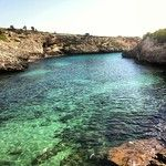 Cala Virgili, una cala virgen en la zona de Manacor, Calas de Mallorca. Hoy luce el sol en la isla, disfrutad del sábado #igersmallorca #lap...