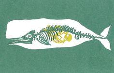 Bone-A-Day-6. Whale. cut paper art.