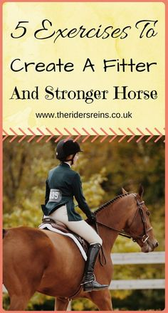 The most important role of equestrian clothing is for security Although horses can be trained they can be unforeseeable when provoked. Riders are susceptible while riding and handling horses, espec… Horse Riding Tips, My Horse, Riding Gear, Horse Hair, Riding Boots, Show Jumping Horses, Show Horses, Equestrian Outfits, Equestrian Fashion