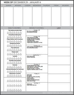 Back to School: BusyBodyBook Planner & Wall Calendar