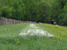 Wet-Meadow-Source-River-Norges-Territoires-17 « Landscape Architecture Works | Landezine