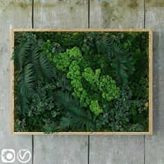 Fytowall model, this model, this vertical garden model Textures low-poly model ready for VR, accurately design for perfect visualization Cinema 4d Render, Cloud Decoration, Low Poly 3d Models, Green Rooms, 3d Visualization, Flower Decorations, Art Pieces, Household, Photoshop