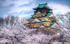 Замок в Осаке. Япония