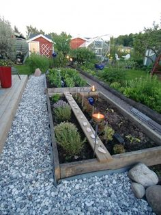 My herb garden  Please and thank you can I have one low this?