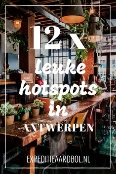 Consuming out in Antwerp: good eating places and eating places in Antwerp Voyage Europe, Europe Travel Guide, Asia Travel, Travel Tips, Budget Travel, Places In Europe, Places To Eat, Places To Travel, Eating Places