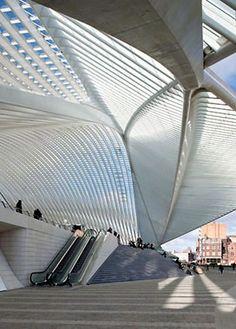 Liège Guillemins TGV Station (Belgica) by Santiago Calatrava.