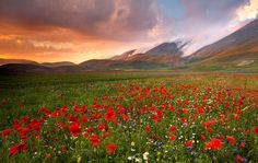 ♥ Sibillini National Park - Luca Giustozzi