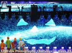 Week 21 Artistic: Fantasy   #52WeekPhotographyChallenge #dogwood52 #dogwoodweek21 #photography #photo #images #pics #debw07 #IntrospectivePics #Introspective
