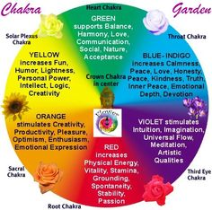 °Chakra Garden                                                                                                                                                                                 More