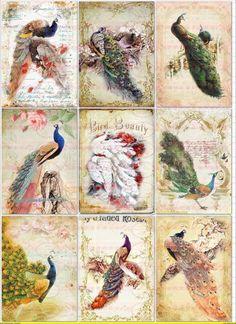A4 Vintage Bügelbild Pfau Shabby Chic von Doreen`s Bastelstube  - Kreativ & Außergewöhnlich auf DaWanda.com