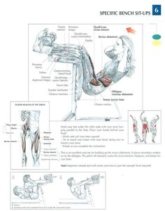 Ab Excersise - Specific Bench Sit ups ~ Re-Pinned by Crossed Irons Fitness