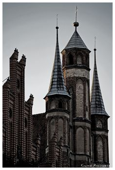 Towers in Torun (Poland) Classical Architecture, Central Europe, Place Of Worship, Towers, Barcelona Cathedral, Poland, Places To Visit, Country, Building
